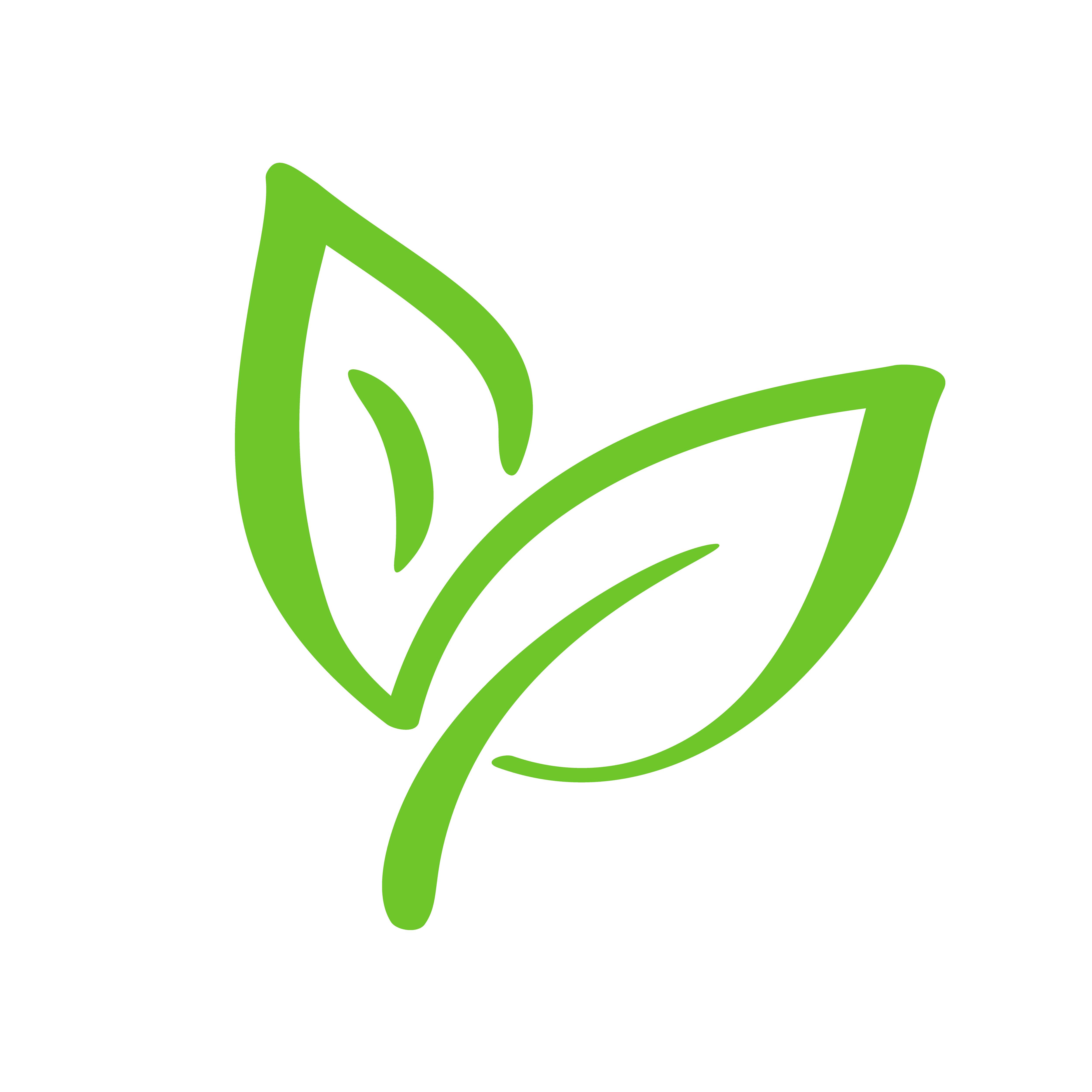 foto de Logo of green leaf of tea Ecology nature element vector