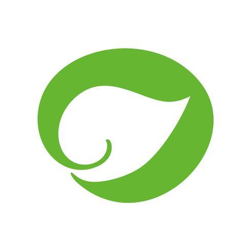 Logo della foglia verde di tè. Icona di ecologia elemento natura vettoriale. Illustrazione disegnata a mano di bio calligrafia di eco vegano