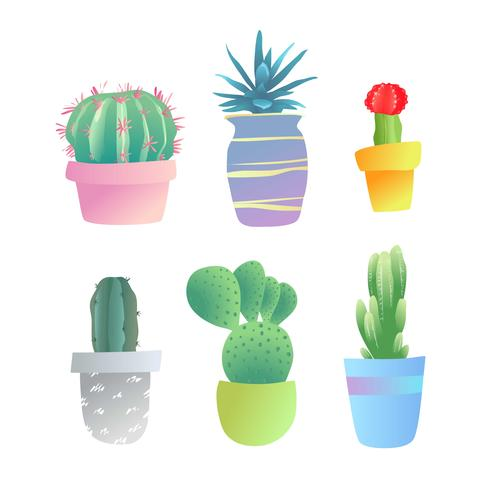 Set of decorative cactuses and home plants in pots. vector