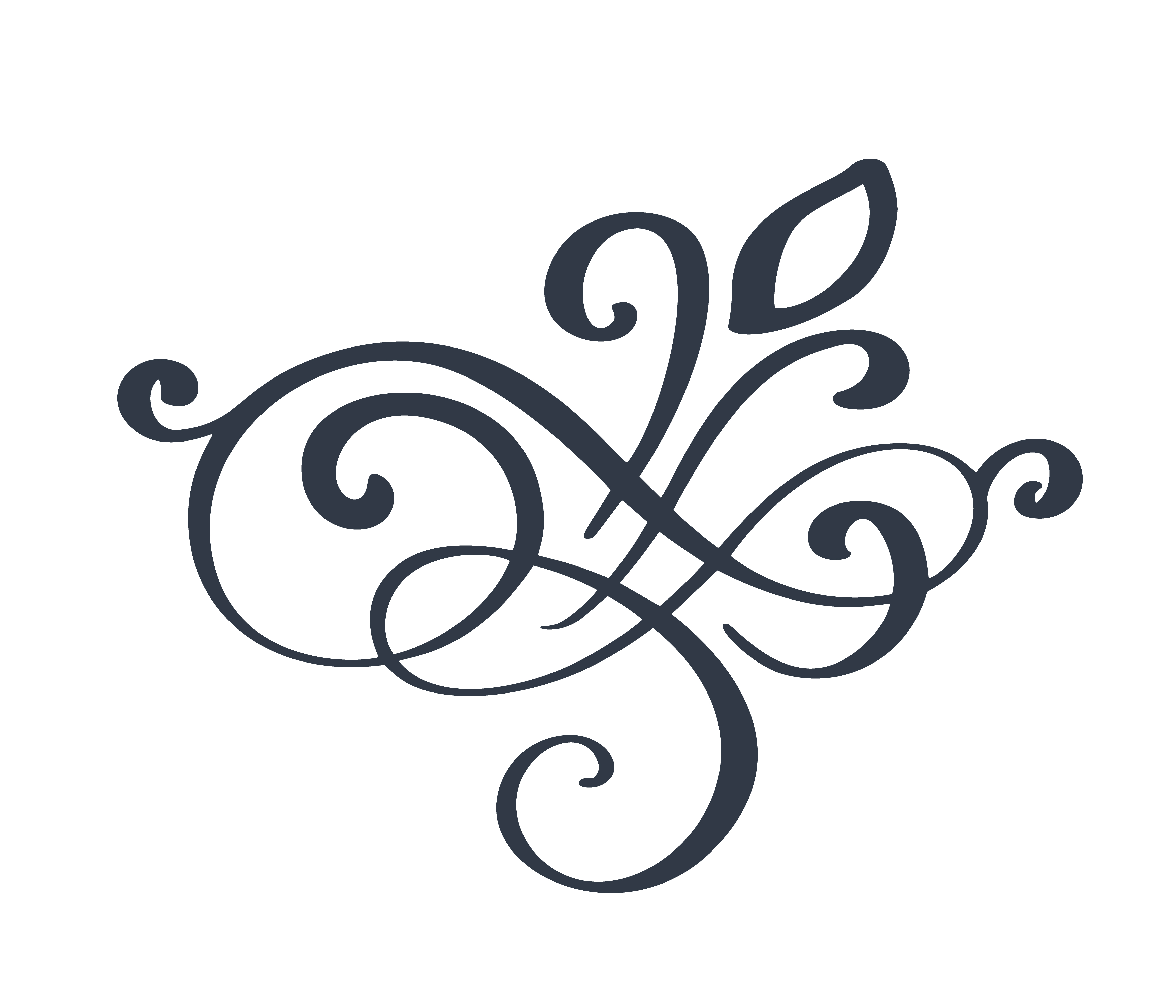 flourish swirl ornate decoration for pointed pen ink