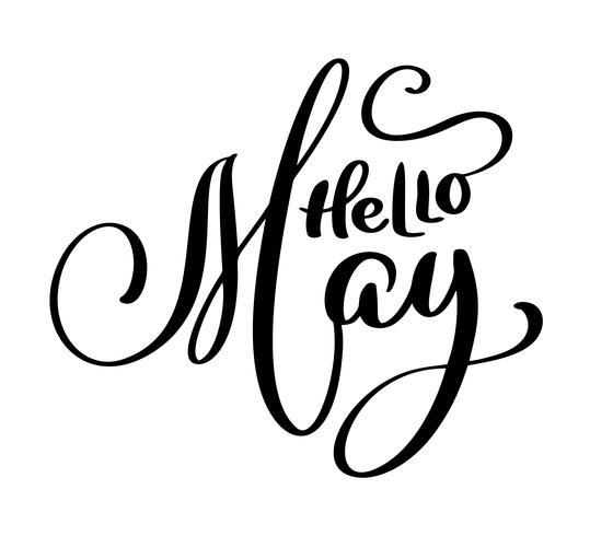 Hello May handwriting lettering design  vector