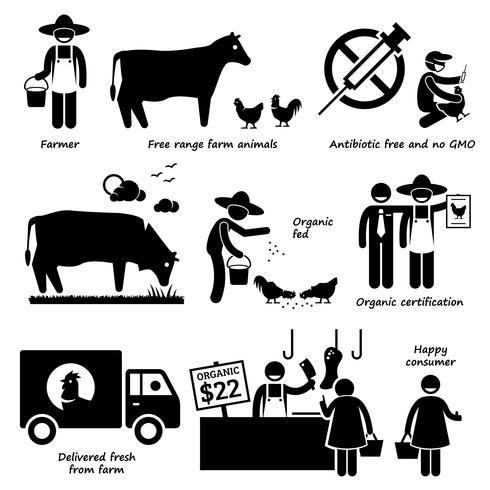 Natuurlijk biologisch voedsel vlees rundvlees kip gevogelte stok figuur Pictogram pictogrammen.