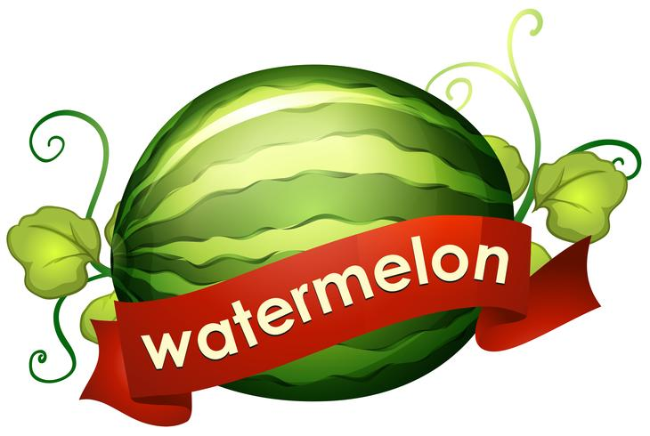 Wassermelone mit roter Fahne