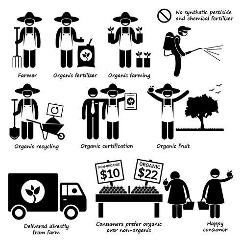 Fruits et légumes de l'agriculture biologique icônes de pictogramme de bonhomme allumette.