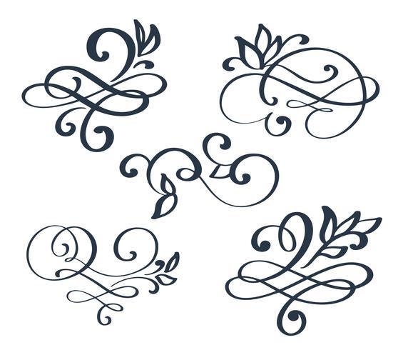 Separador de floreio desenhado mão conjunto vintage vetor