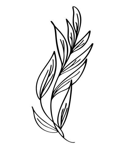 Fleurs modernes dessinés à la main, dessin et croquis floraux avec dessin au trait, illustration vectorielle, conception de mariage pour t-shirts, sacs, affiches, cartes de souhaits, isolé sur fond blanc vecteur