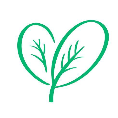 Ejemplo verde de la caligrafía del diseño de la plantilla del logotipo del vector de la naturaleza de la hoja del vegano, diseño de la comida. Letras manuscritas para restaurante, cafe de menú sin procesar. Elementos para etiquetas, logos, insignias, pega