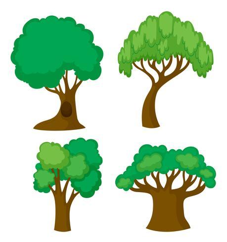 Vier verschiedene Baumformen