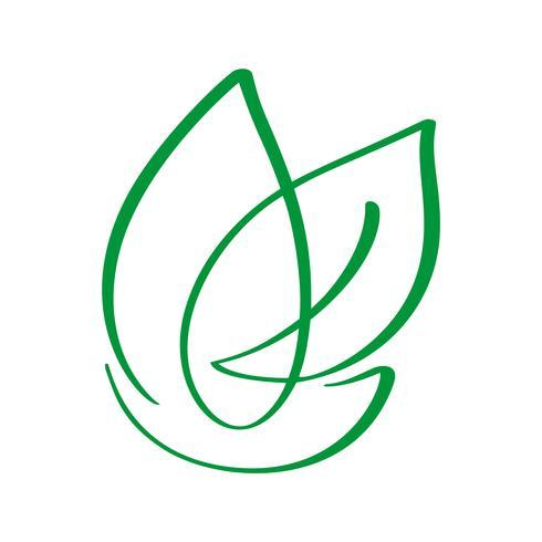 Illustrazione di calligrafia di progettazione del modello di logo di vettore di natura della natura della foglia del vegano, progettazione dell'alimento. Lettere scritte a mano per ristorante, menu crudo caffè. Elementi per etichette, loghi, badge, ad