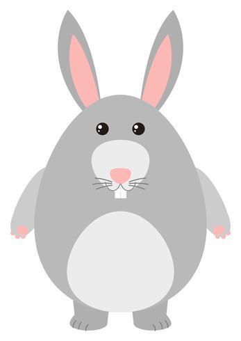 Simpatico coniglio con pelliccia grigia