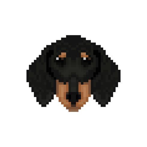 Tête de chien de teckel dans le style pixel art. vecteur