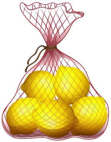 Limone fresco in sacchetto netto