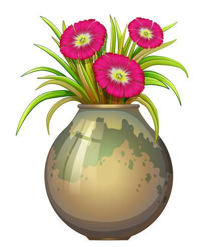 En stor kruka med blommor