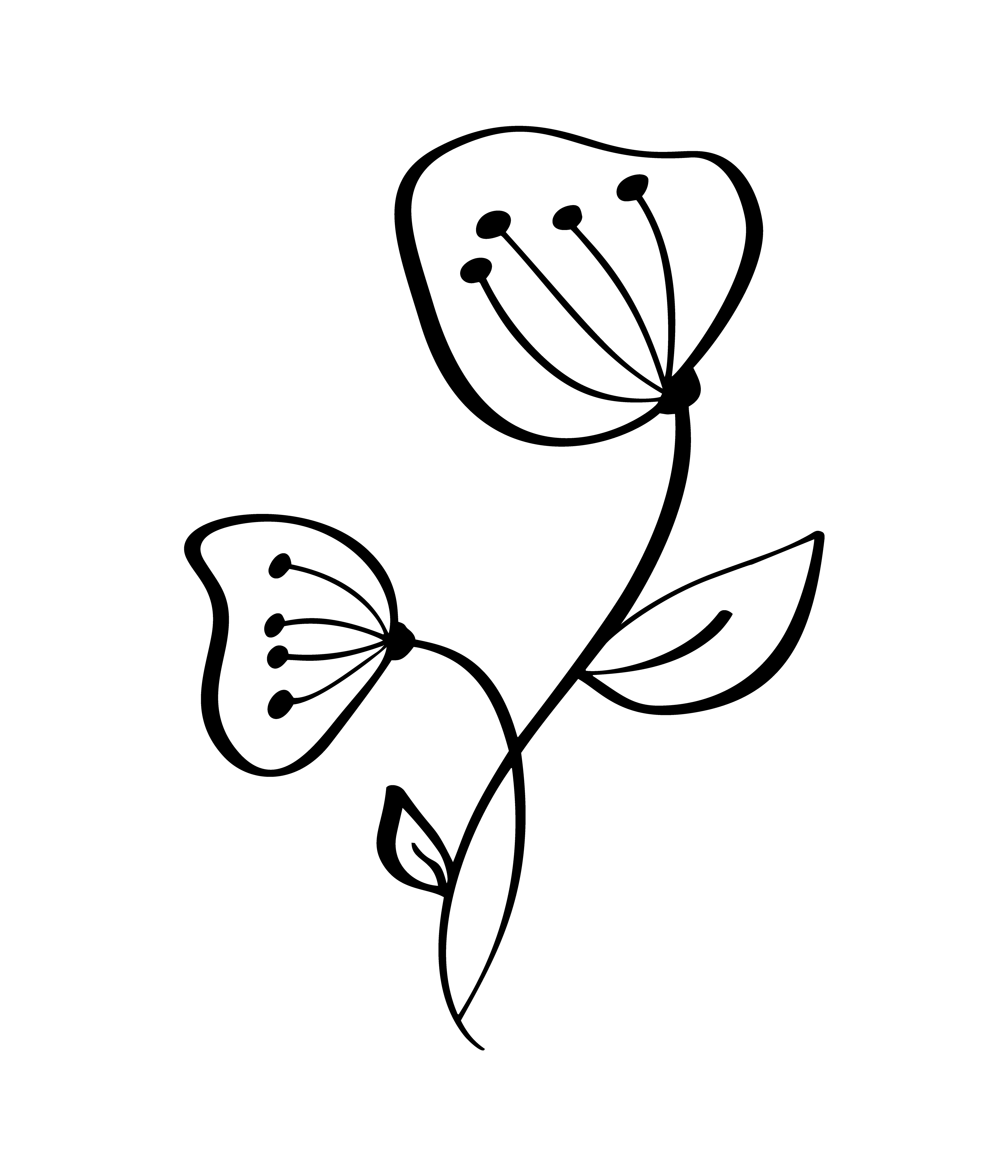 Hand Drawn Modern Flowers Drawing And Sketch Floral With