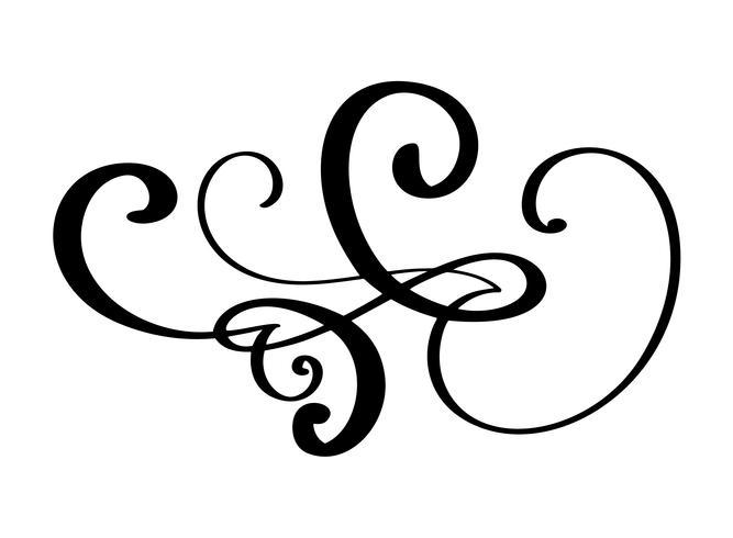Séparateur de bordures dessinées à la main des éléments de concepteur de calligraphie. Illustration de mariage vintage de vecteur isolé sur fond blanc