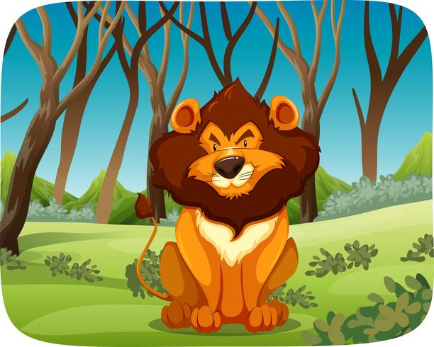 Een leeuw in het bos