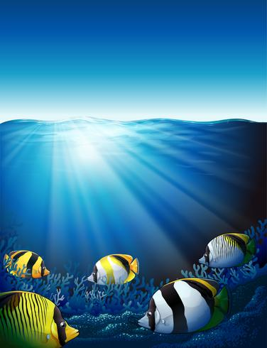 Peces bajo el mar con luz solar