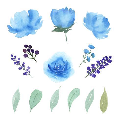 Floral e deixa o grupo de elementos da aquarela flores luxúrias pintados à mão. A ilustração de aumentou, peônia, vintage pequeno das flores, aquarelle isolado. Design de decoração para o cartão de convite, casamento, cartaz, banner.