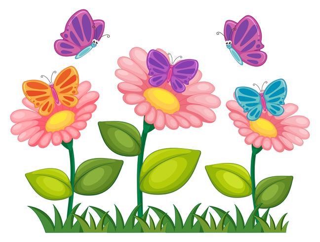 Borboletas voando no jardim de flores