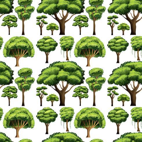 Diseño de fondo transparente con diferentes tipos de árboles