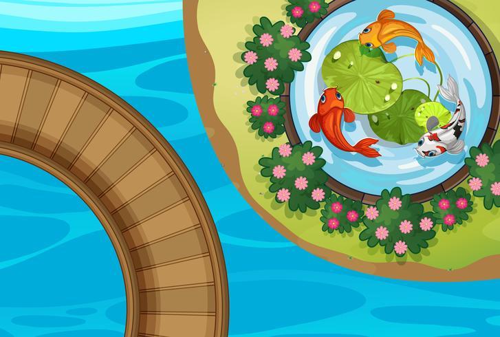 Översta vyn av park med fisk i damm