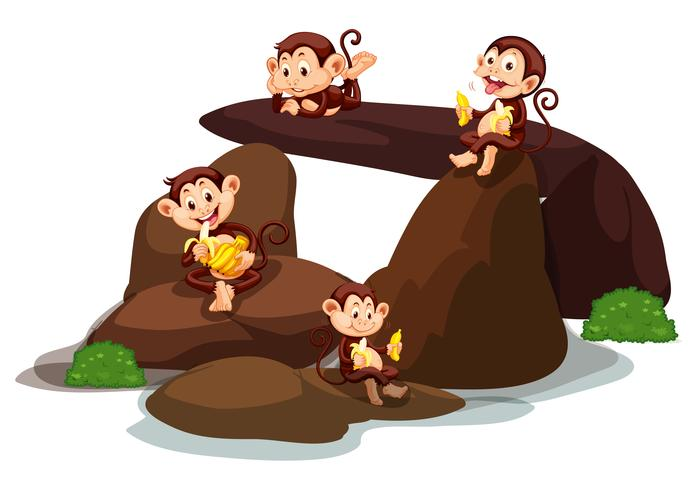 Glad apor äter banan i sten