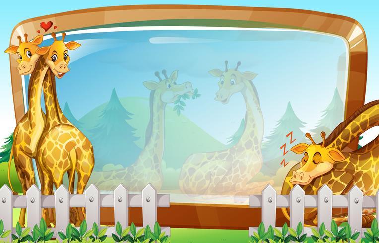Modello di cornice con giraffa nel parco