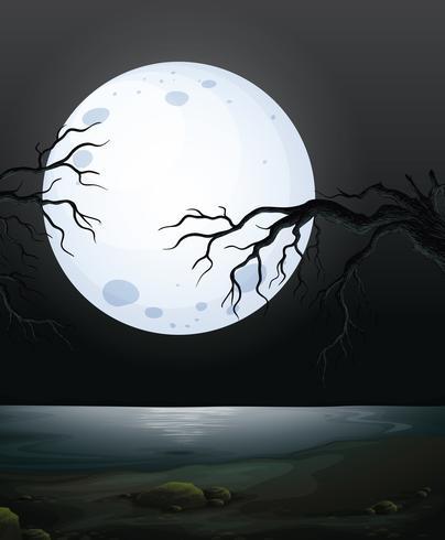 Una escena de la noche oscura de miedo