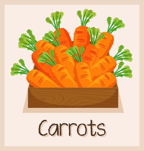 Zanahoria en caja de madera.