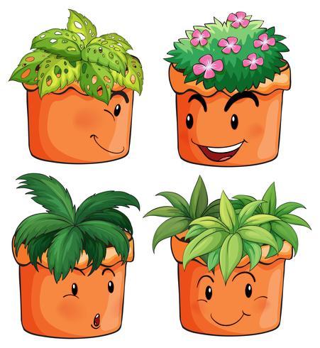Blomsterkrukor med olika typer av växter