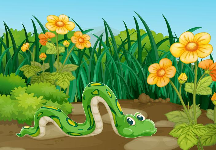 Serpent vert rampant dans le jardin