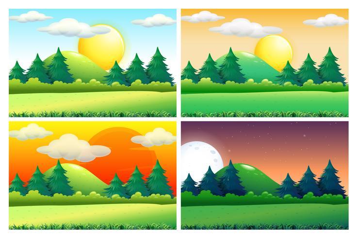 Fyra scener av gröna fält vid olika tider på dagen