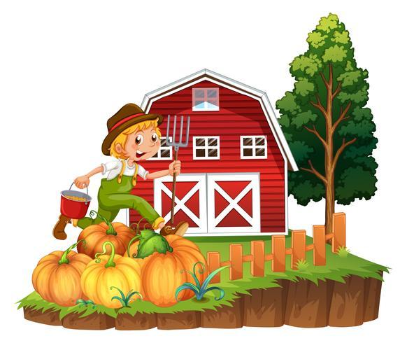 Agricoltore e zucca in fattoria vettore