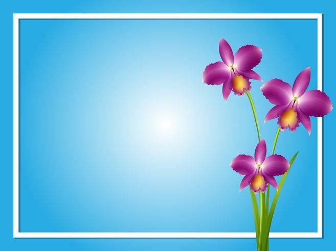 Gränsmall med lila orkidé