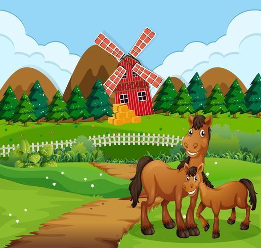 Cavallo al paesaggio della fattoria