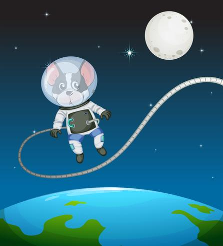 A french bulldog in space