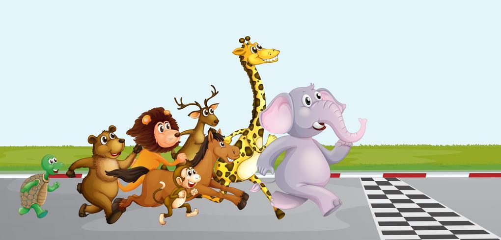 Animais selvagens correndo na estrada