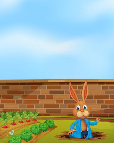 Un lapin creusant un trou à côté de la ferme