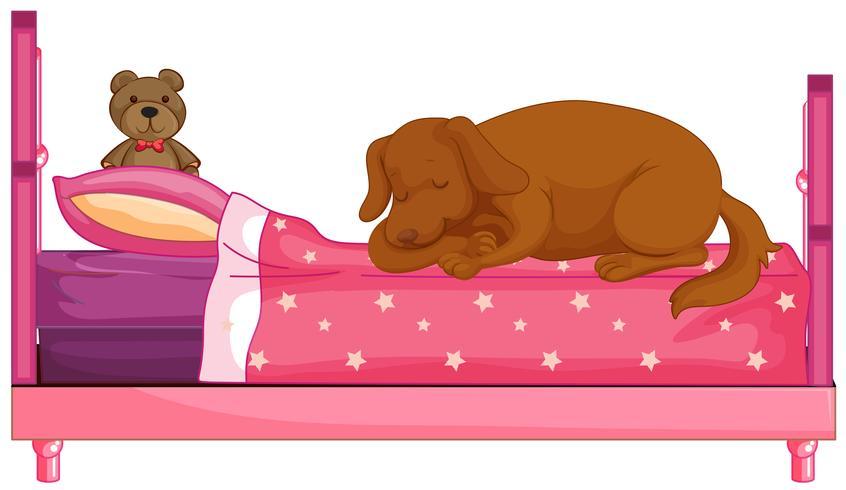 Cane che sta dormendo sul letto rosa