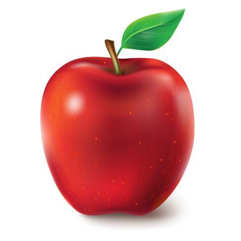 Illustration vectorielle d'une pomme juteuse