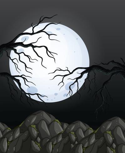 Fondo de bosque de noche oscura de misterio