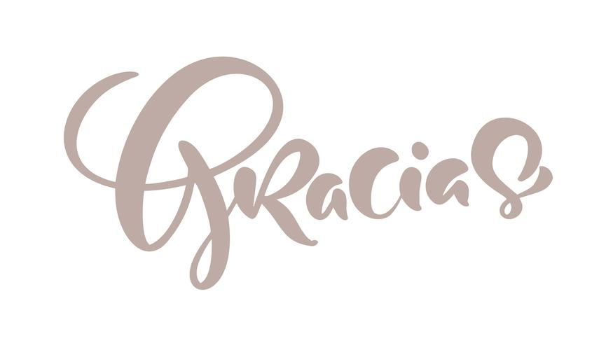 Gracias hand written lettering. Modern brush calligraphy. Thank you in spanish. Isolated on background. Vector illustration