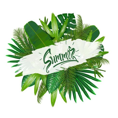 Tropical leaves around the sign summer on white background. vector