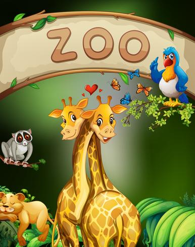 Zoo sign and many animals