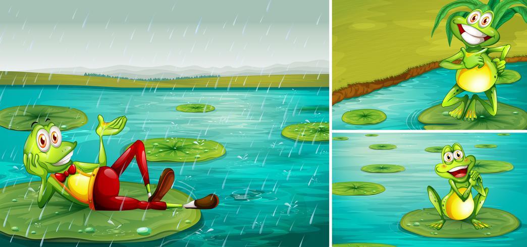 Scène avec des grenouilles dans l'étang