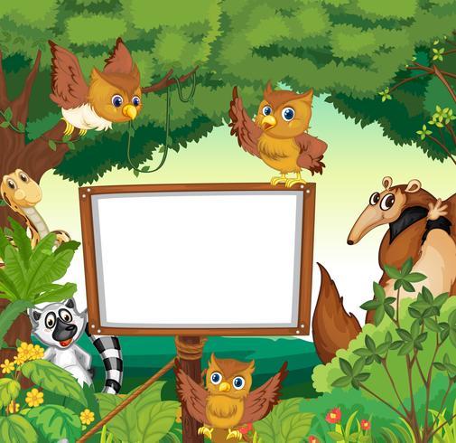 Wilde Tiere und weiße Tafel im Dschungel