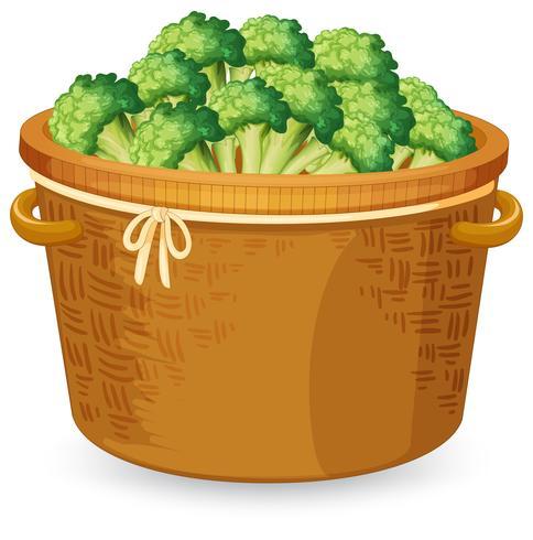 Una canasta de brocoli