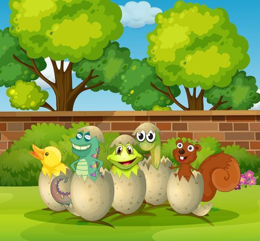 Animales en cáscaras de huevo en el parque