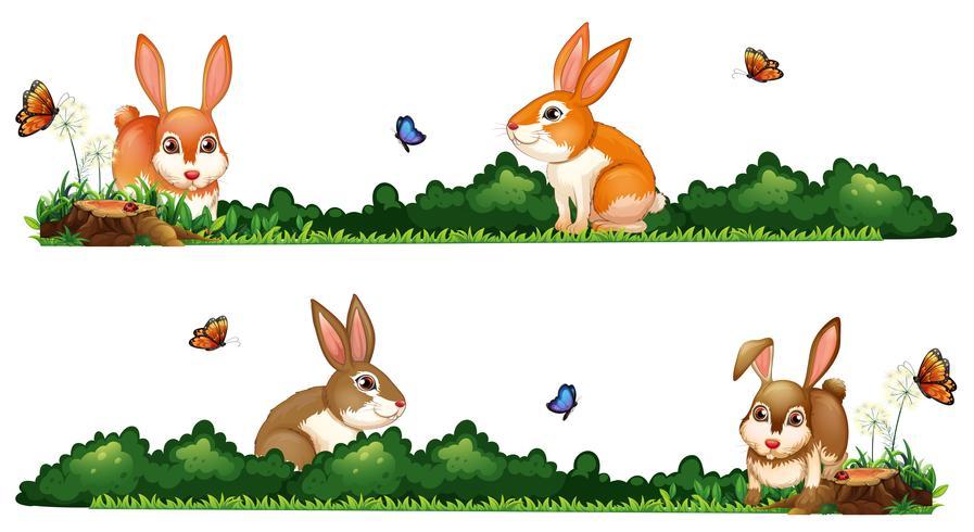 Des lapins heureux dans le jardin vecteur