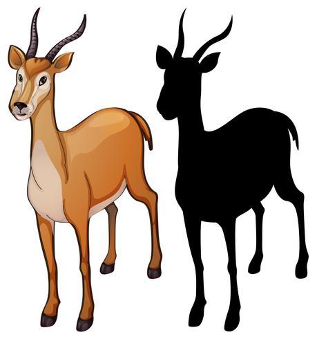 Satz von Gazelle Design